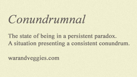 conundrumnal: The state of being in a persistent paradox; A situation presenting a consistent conundrum